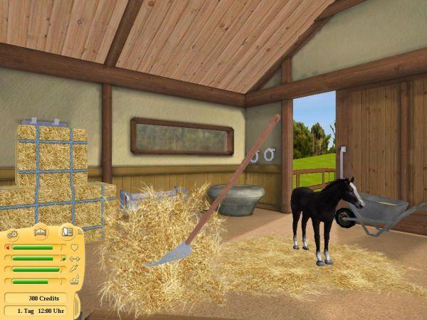 www.pferdundpony-spiele.de
